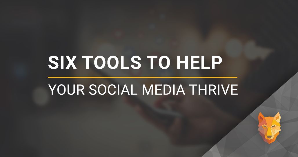 wolfnet six tools to help your social media thrive